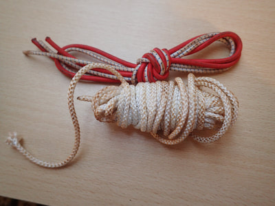Elastic and cord
